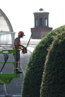 Hedge trimming, RBG Kew