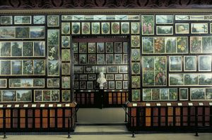 Inside the Marianne North Gallery