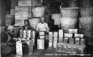 Packing tea in India