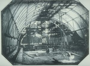 The Palm House under construction