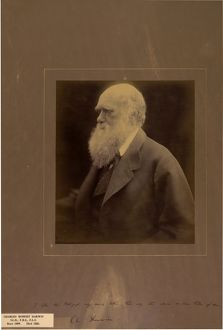 Portrait of Charles Darwin, 1868, by Julia Margaret Cameron.