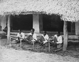 Preparing cinnamon quills for drying, Sri lanka, 1880's