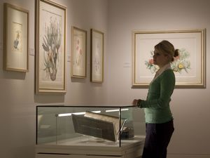 Shirley Sherwood Gallery of Botanical Art