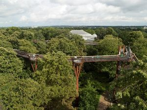 The Treetop Walkway, RBG Kew