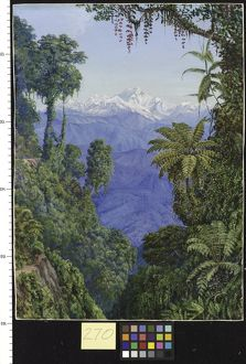 270. Distant View of Kinchinjunga from Darjeeling