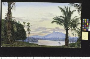 557. View of Matang and River, Sarawak, Borneo.