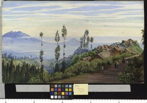 701. View of the Village of Tosari, Java