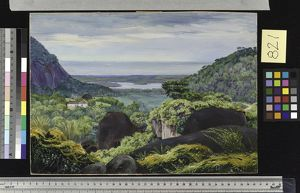 821. View near Tijuca, Brazil, Granite Boulders in the foregroun