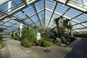 Arid zone, Princess of Wales Conservatory