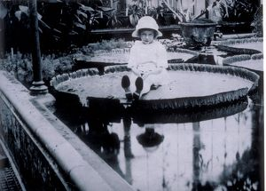 'Miss Cotton' posing on the leaf of giant waterlily Kew Gardens, 1923