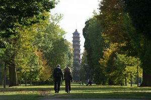 Pagoda in the autumn