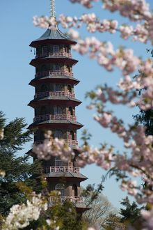 The Pagoda, RBG Kew