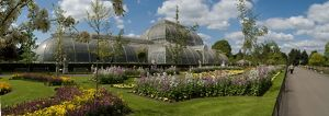 Palm house with spring bedding