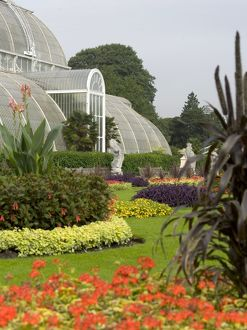 Palm House in summer