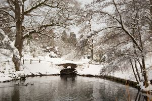 Wakehurst Place in the snow